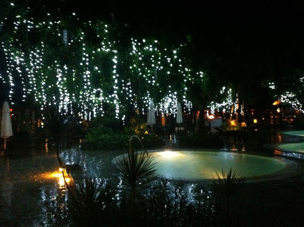 Christmas lights and palm trees make for a romantic atmosphere.