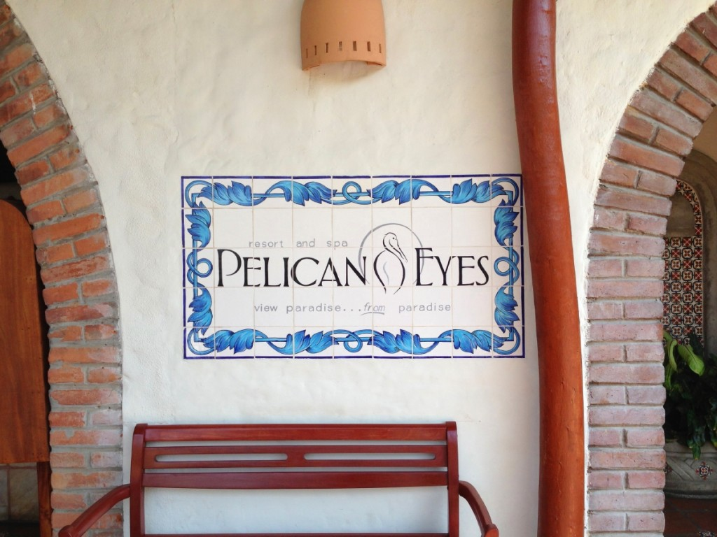 Reception at the Pelican Eyes.